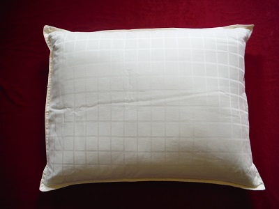 Pillow Filled With Buckwheat Hulls Size 70 50 Cm Extra